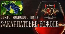 Фестиваль молодого вина «Закарпатське божоле» Рис.1