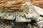 Дослідження ЄС: з України вивели $1,5 млрд прибутку від експорту зерна Рис.1