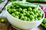 Українські вчені визначили найпродуктивніший сорт озимого гороху Рис.1
