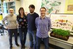 Дослідники створили найбільш повну генетичну карту перцю Рис.1
