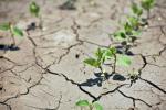 Американці створили картографічну платформу для боротьби з посухою Рис.1
