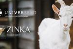 LNZ Group із брендом UNIVERSEED та Zinka починають співпрацю Рис.1