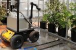 Роботи-запилювачі йдуть на зміну бджолам Рис.1