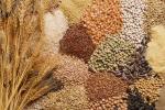 В Україні буде вдосконалено процес державної реєстрації сортів рослин Рис.1