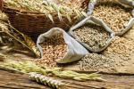 Гроші на посівну-2019: ДПЗКУ розпочинає закупівлю зерна майбутнього врожаю Рис.1