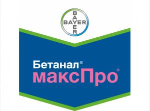 Бетанал Макс Про 209 OD