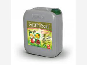 ГуміСил (GumiSil) (марки: ГуміСил-ГуміСтат (GumiSil-GymiStat))