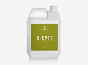 ІКС-САЙТ (X-Cyte)