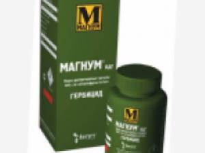 ММ-600