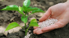 Агропідприємства майже всіх областей перевиконали план із закупівлі міндобрив Рис.1